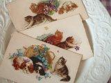 アンティークポストカード3枚セット 「猫と犬」