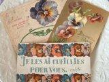 アンティークポストカード3枚セット 「ヴィオラ」