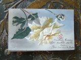 セルロイドカード 薔薇